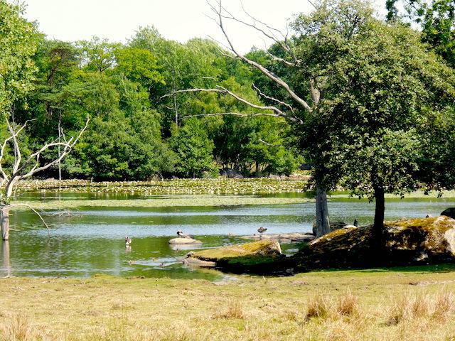 Eriksberg Familientipp Natursafari Schweden