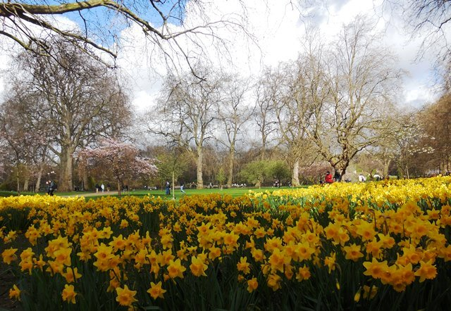 London mit Kind, St. James Park