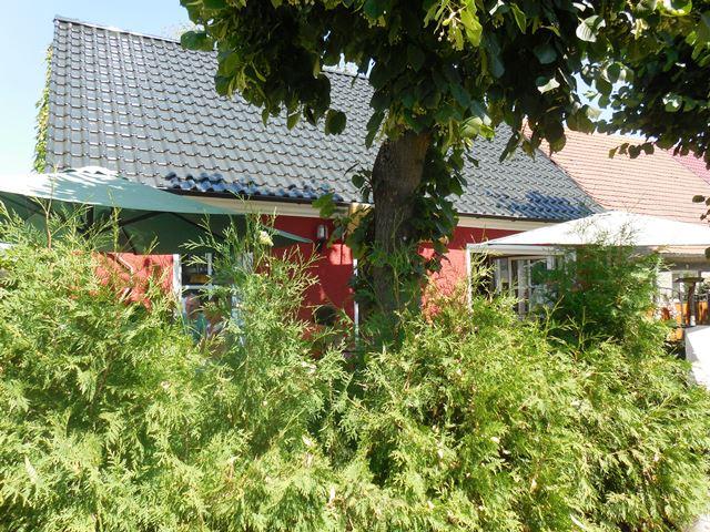 Das Kleine Haus, Linum