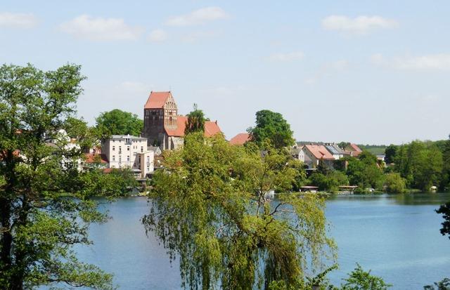 Draisine_Lychen_Brandenburg