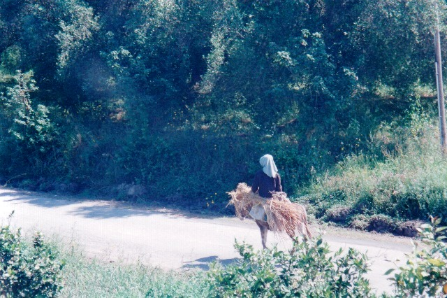 Landleben auf Korfu