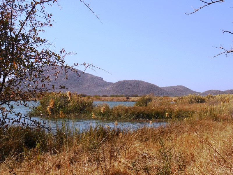 Mokolodi_nature_reserve_botswana