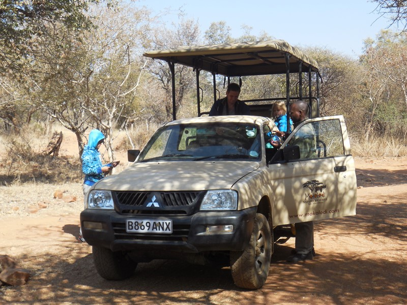 Familiensafari_Botswana game drive Mokolodi Nature Reserve
