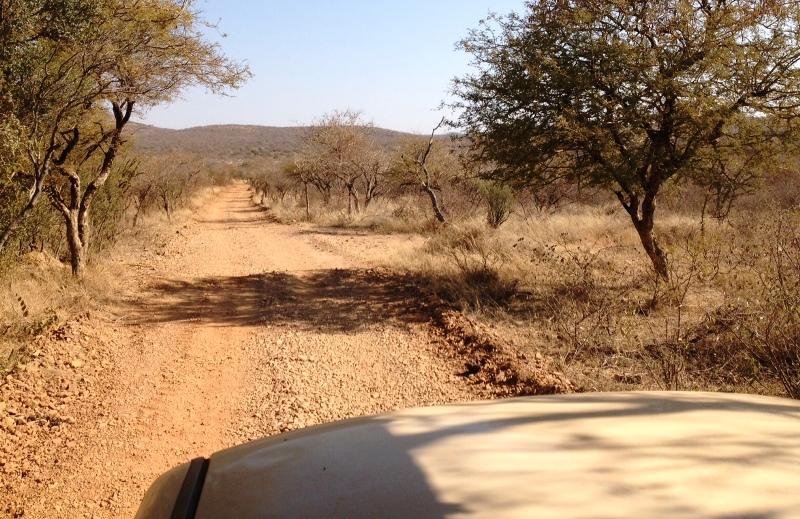 Mokolodi_Afrika_Safari_Botswana