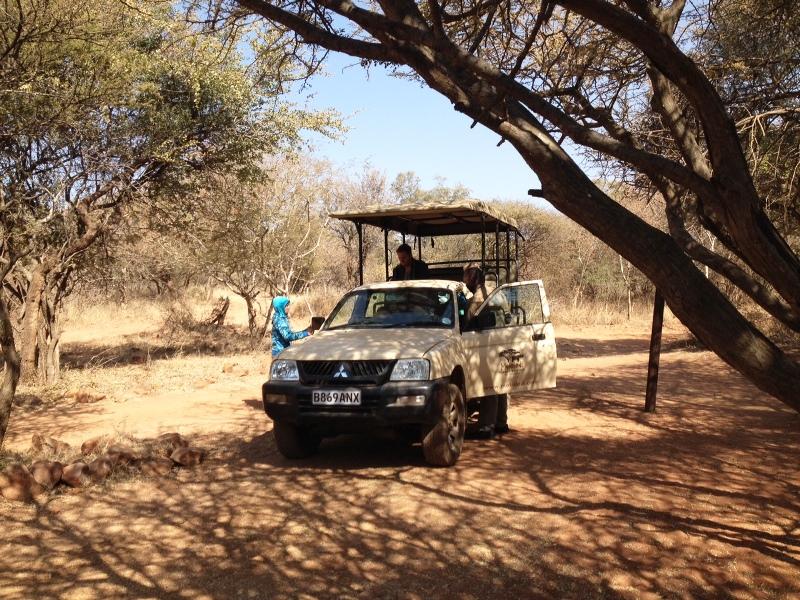 Safari_Botswana_mit_Familie