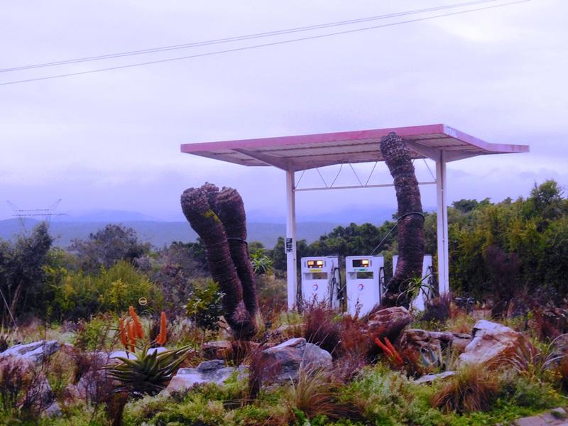 petrol station addo main camp south afrika