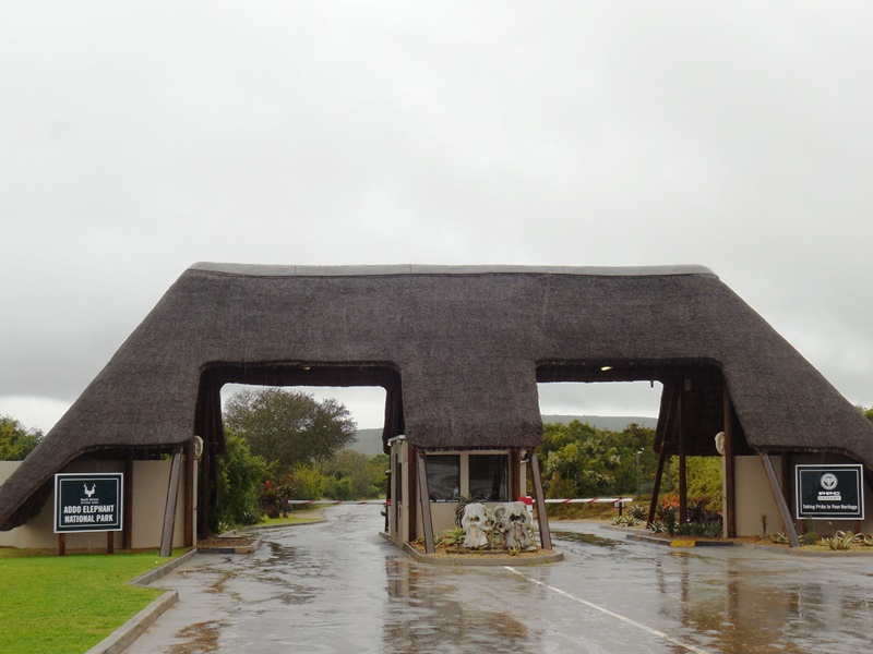 Addo Elephant National Park_Main Camp