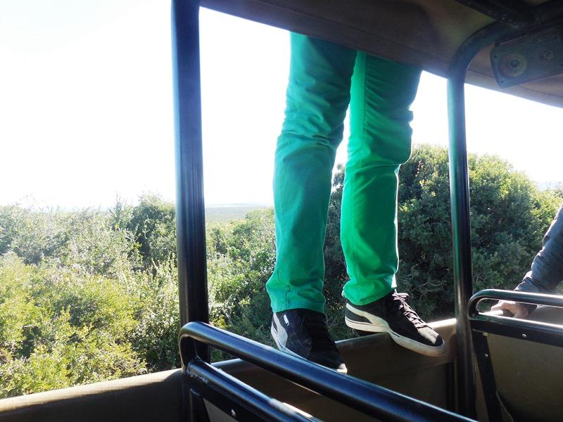 Afrika-Safari, Sicherheit Hirschfahrt