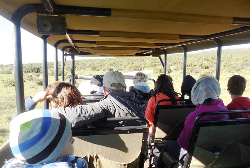 Mit Familie auf Safari in Afrika