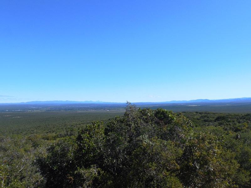 Wildreservat Südafrika Addo Elephant National Park