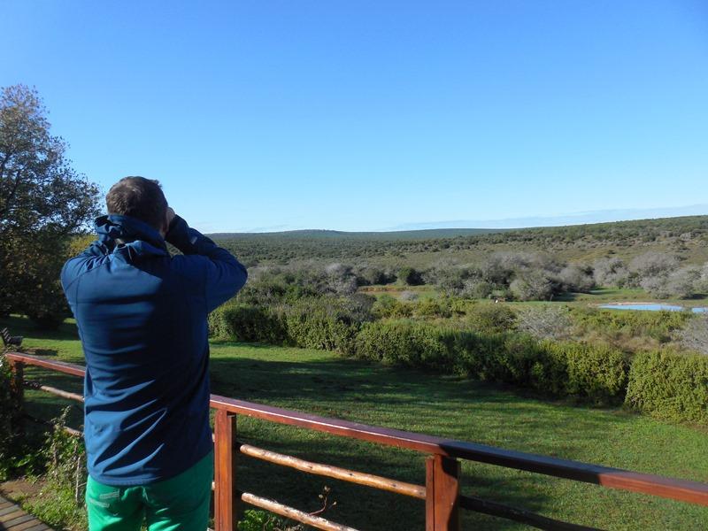 Auf Safari mit Familie Südafrika