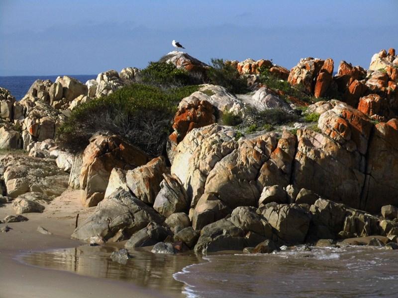 Plettenberg Bay_Südafrika_mit_Kind