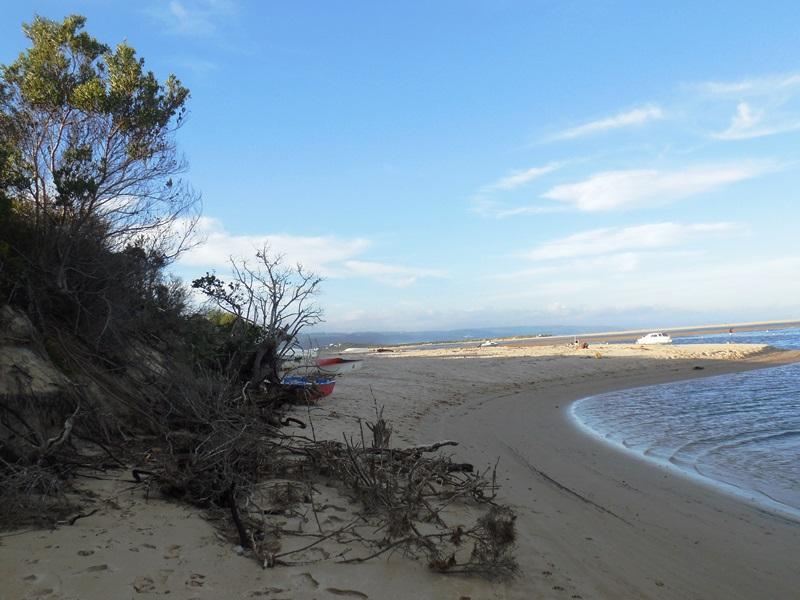 Familienreise Südafrika_Plettenberg Bay