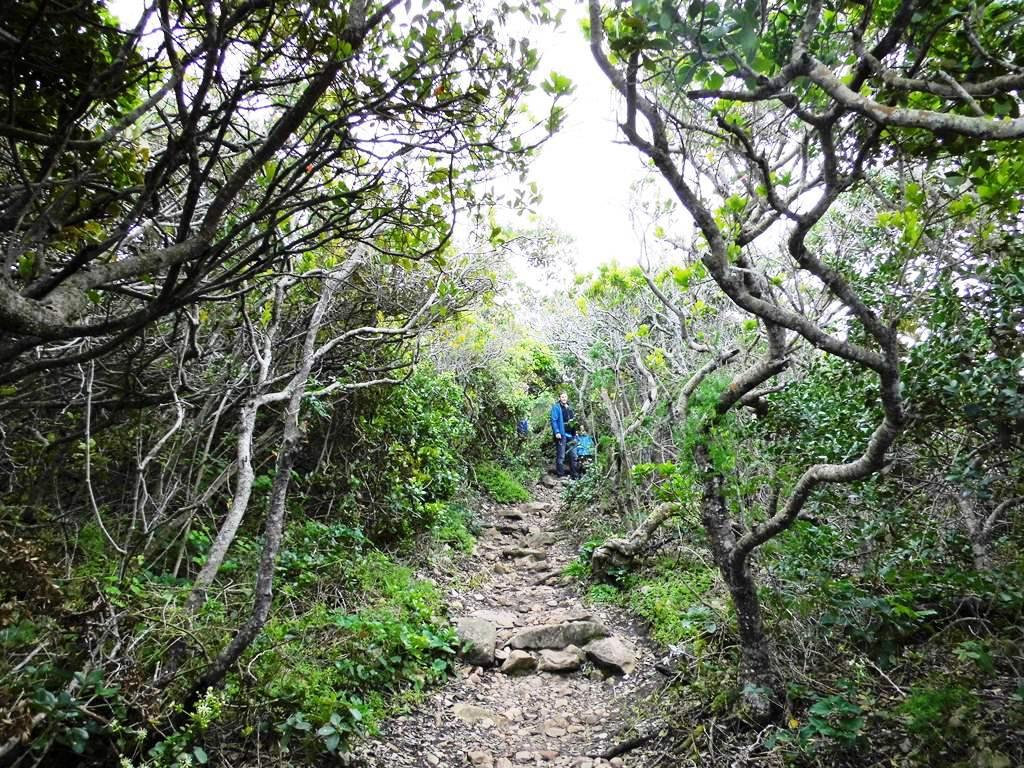 Robberg Nature Reserve_Familenwanderung_Südafrika