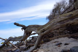 Steilküste Ostsee, Insel Poel
