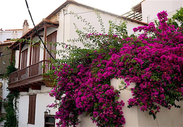 Chora Skopelos-Stadt