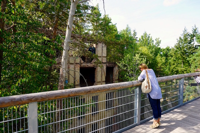 Baumkronenpfad Beelitz Heilstätten, Alpenhaus