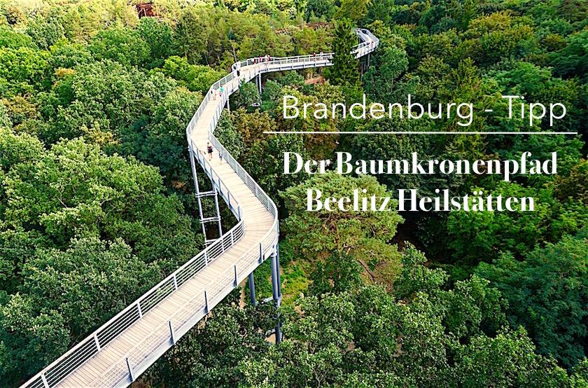 baumwipfelpfad-beelitz-heilstaetten-brandenburg