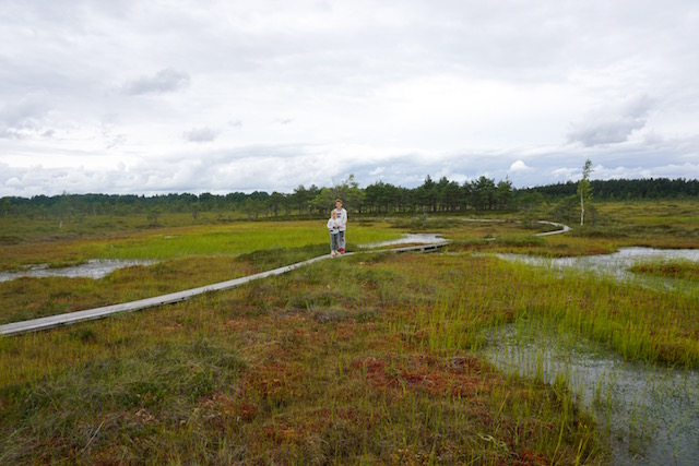 moorwanderung-estland-mit-kindern-soomaa-nationalpark