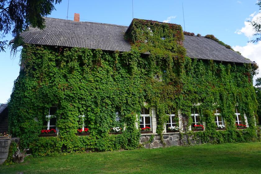 Insel Saaremaa, Estland