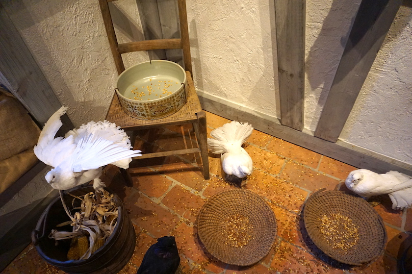 Drei Haselnüsse für Aschenbrödel, Tauben, Schloss Moritzburg