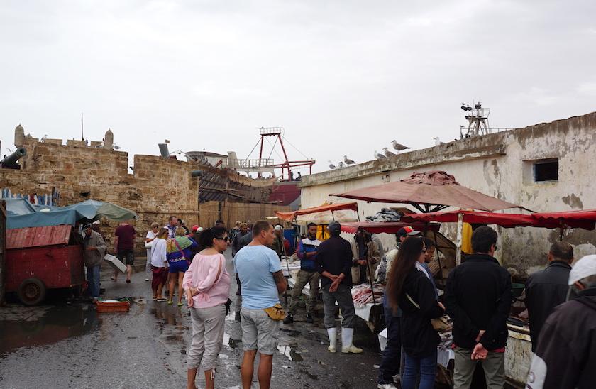 Essaouira, Hafen, Fischmarkt