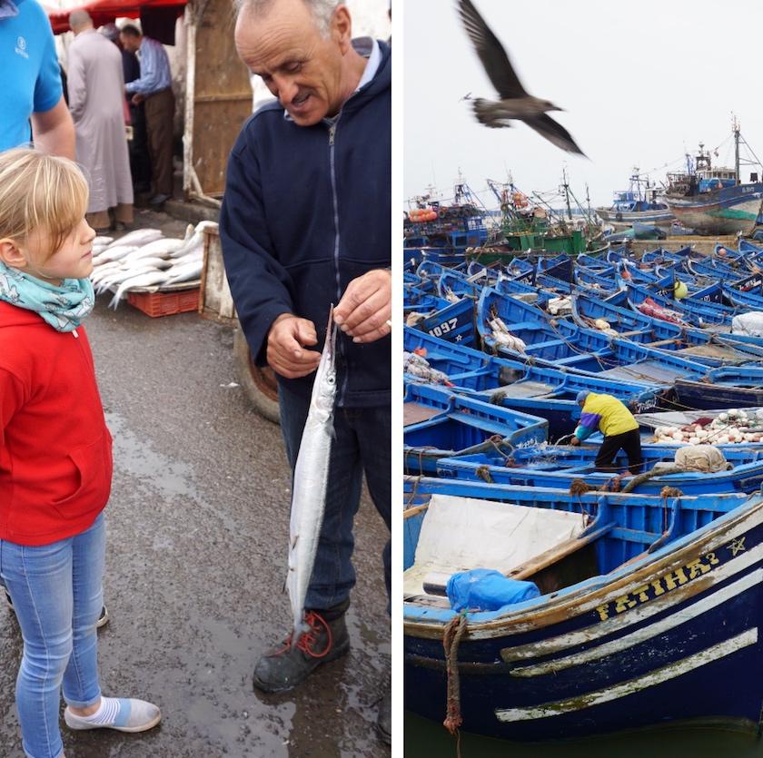 Essaouira Hafen, Fischfang des Tages