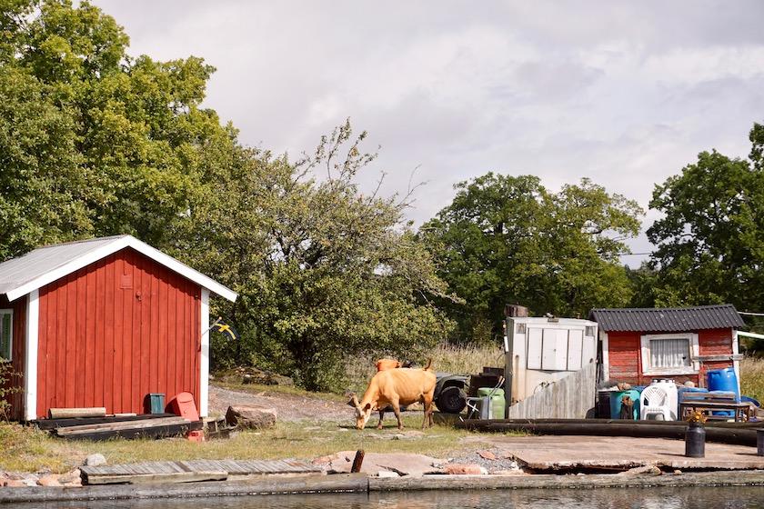 Västervik Schärenfahrt mit Postboot