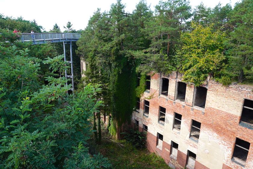 Baumkronenpfad Beelitz Heilstätten Brandenburg