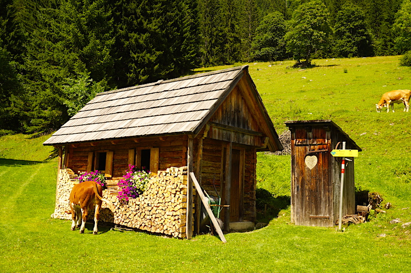 Alm Steiermark