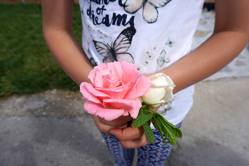 Griechenland Gastfreundschaft mit Rose