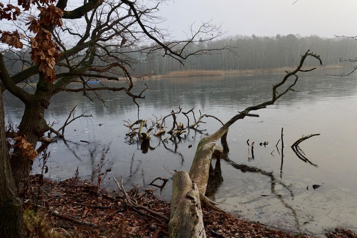 Herbstidylle in Brandenburg