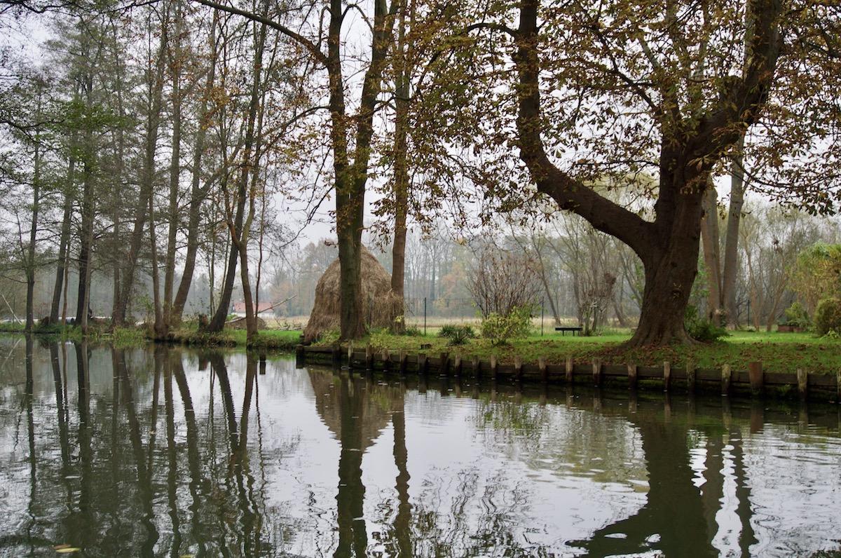 Paddeln Spreewald Herbst Winter