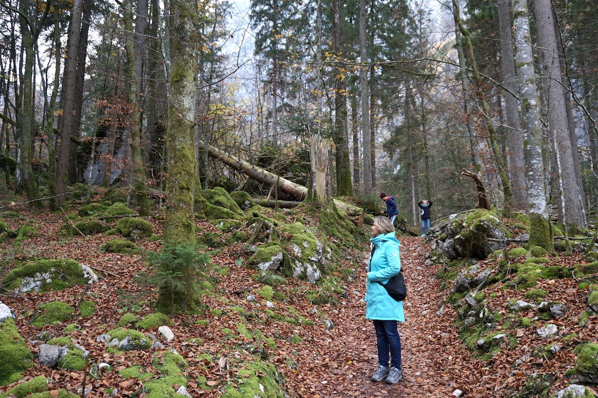 Königssee-Watzmann-Wanderung