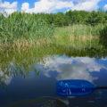 Ruppiner Seenland Paddeln