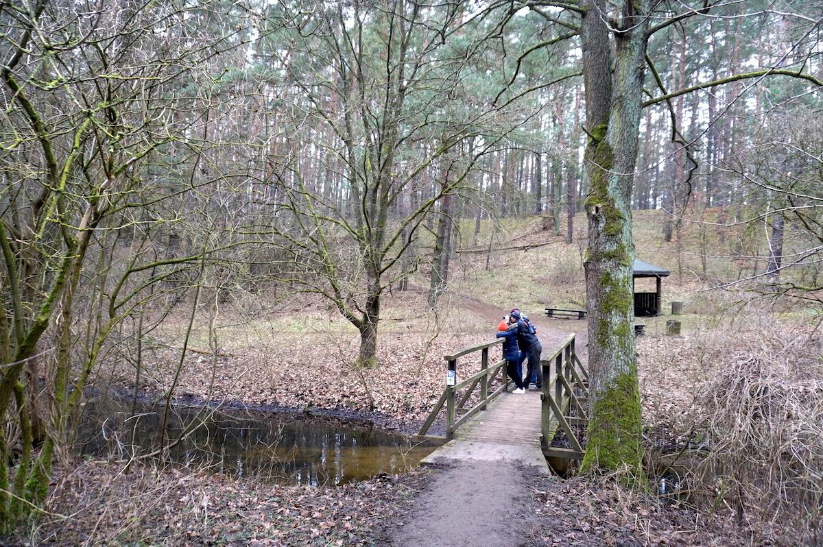 Wanderung Wutzsee, Baumgartenbrücke