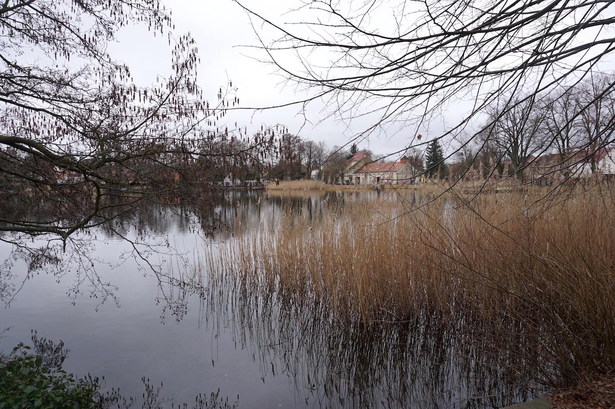 Wanderung_Wutzsee_Brandenburg