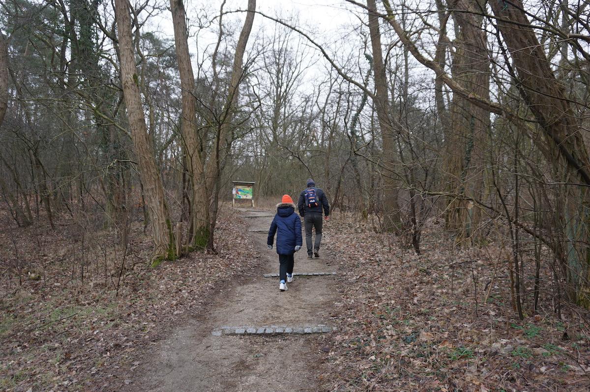 Wutzsee Rundwanderung Brandenburg