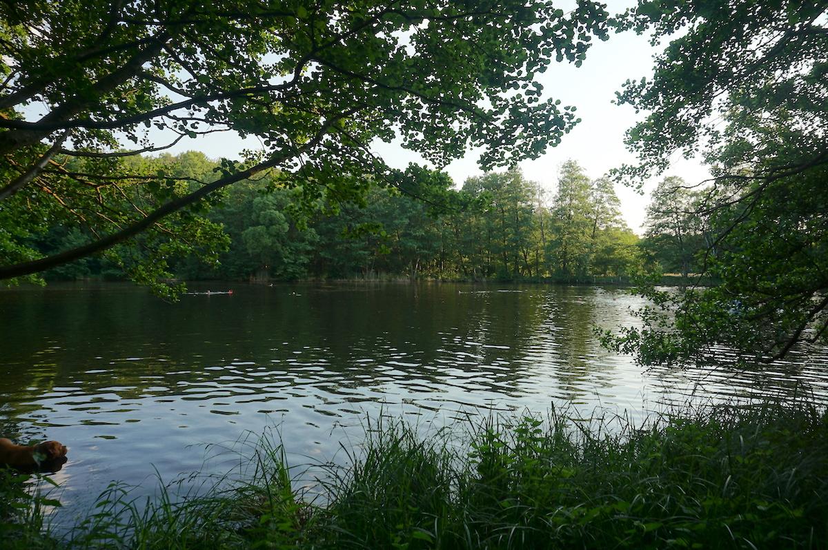 Briese See Brandenburg